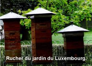 RucherLuxembourg